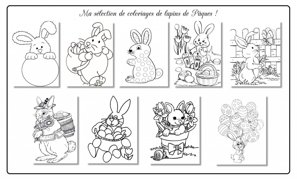 Coloriages lapin