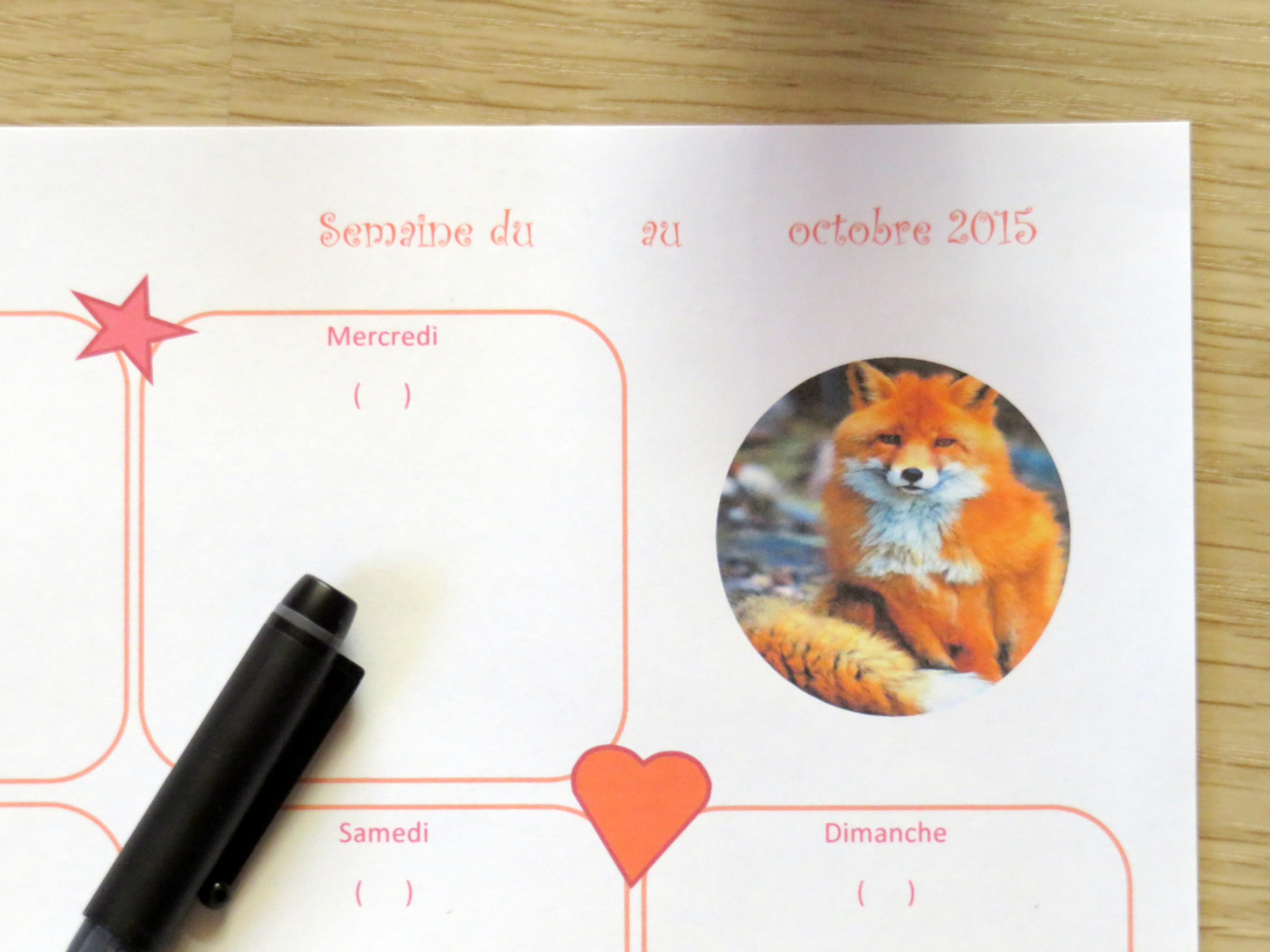 Fox, oh my fox…! La Box d'octobre est arrivée !