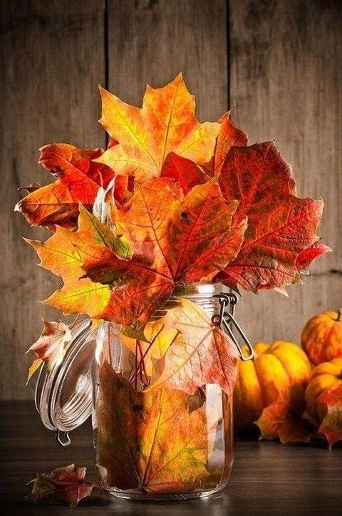 De belles couleurs… pour Thanksgiving !
