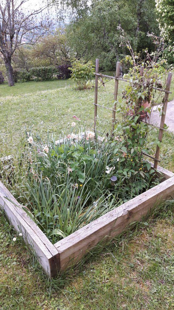 Jardin en carré : à désherber !