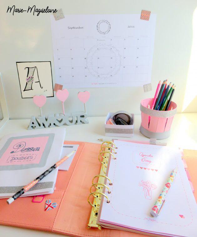 Rentrée scolaire : en rose et gris
