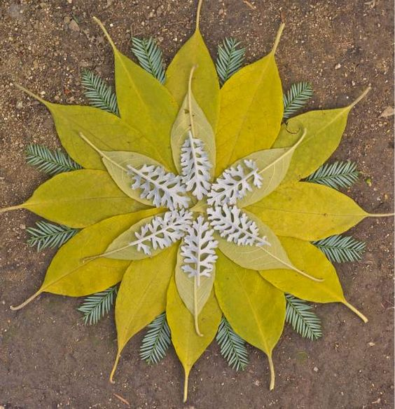 mandala-feuilles