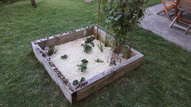 Jardin en carré : fleurs