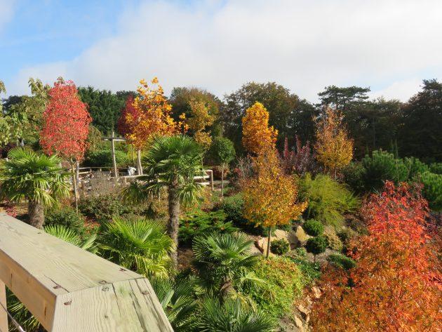 Zoo de Beauval la nature explose