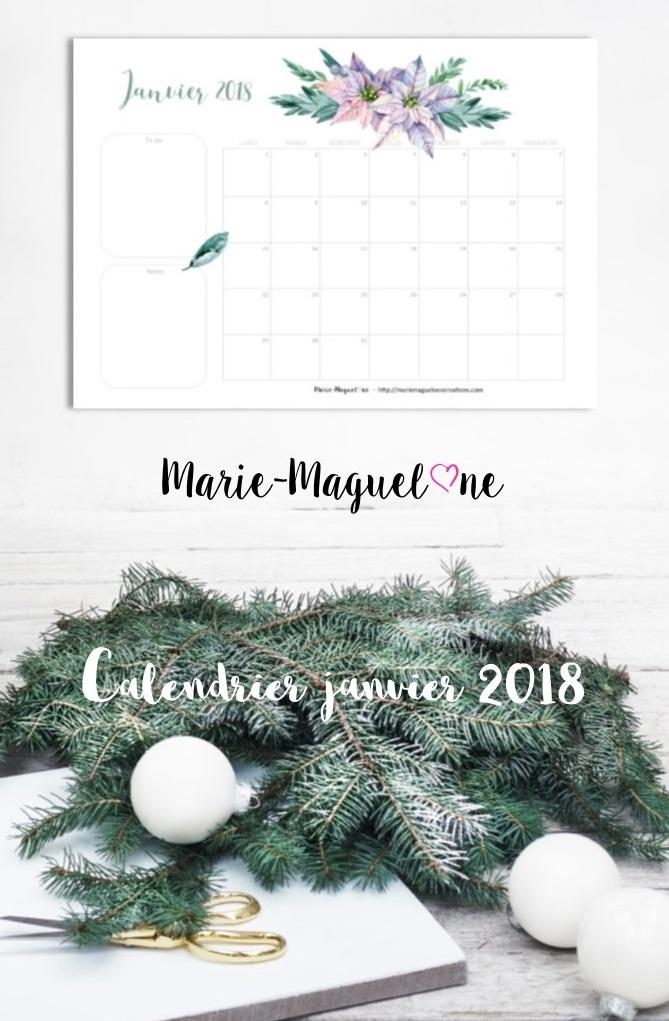 Janvier 2018 !